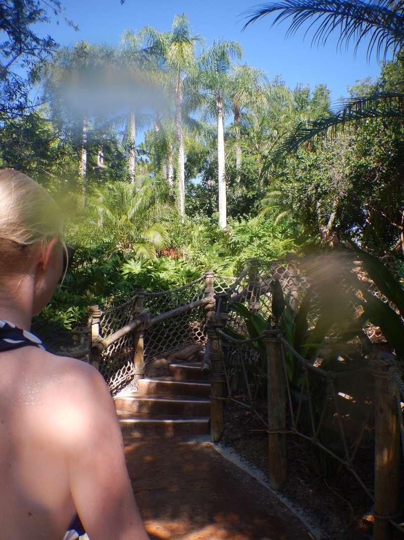 Le merveilleux voyage en Floride de Brenda et Rebecca en Juillet 2014 - Page 10 2410