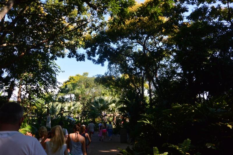 Le merveilleux voyage en Floride de Brenda et Rebecca en Juillet 2014 - Page 10 510