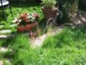 En avant pour l'aménagement de mon petit jardin !  Dscf0711