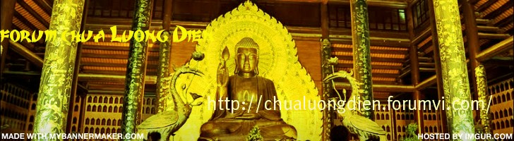 Diễn đàn chùa lương điền