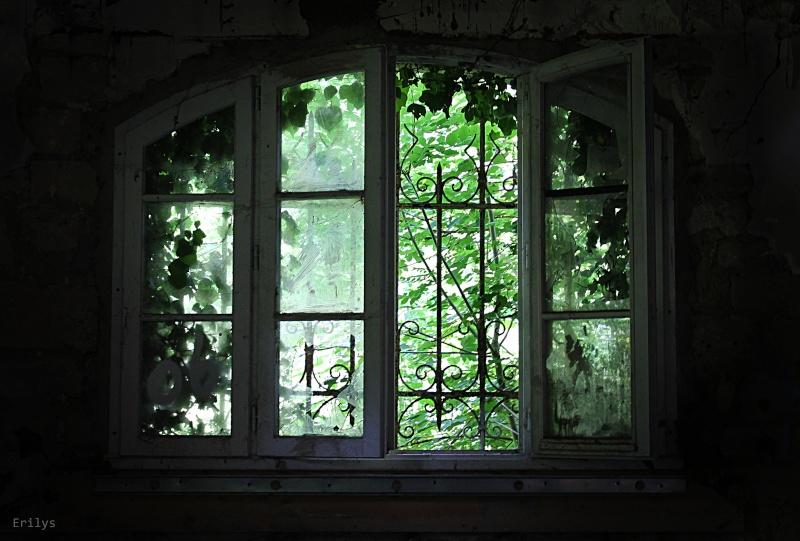 Fenêtres Img_6310