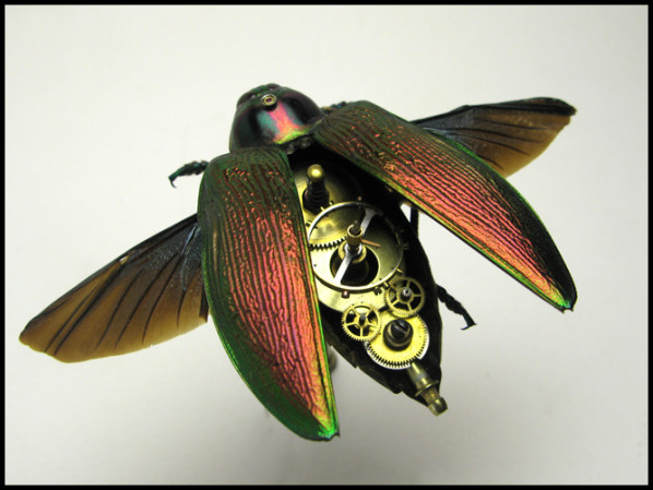 LES OBJETS STEAMPUNK Insect10
