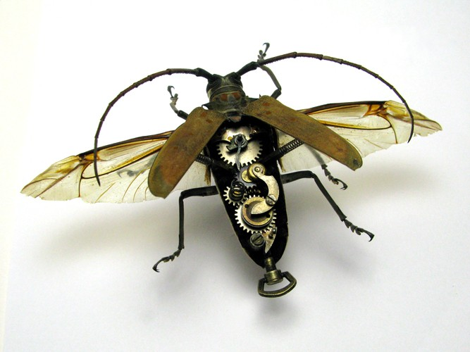 LES OBJETS STEAMPUNK Insect11
