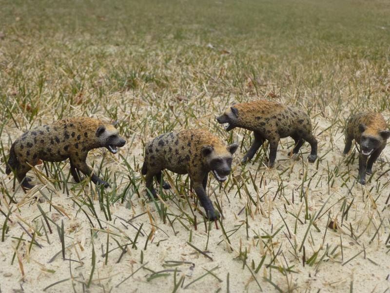 New 2015 African animals P1030418
