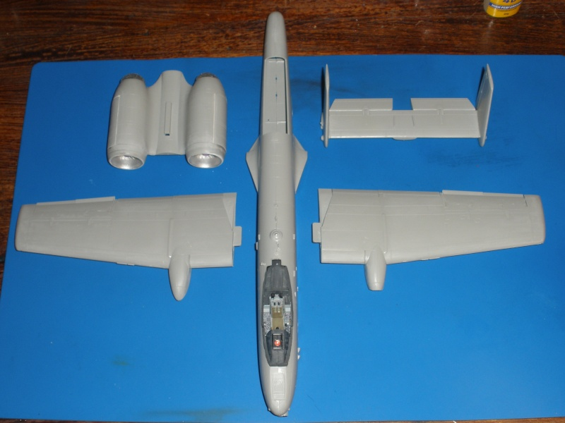 A-10 Thunderbolt II Hobby-boss 1/48. P1060315