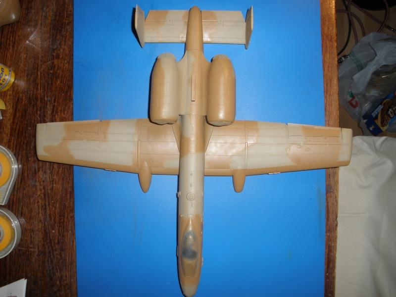 A-10 Thunderbolt II Hobby-boss 1/48. - Page 2 P1220314