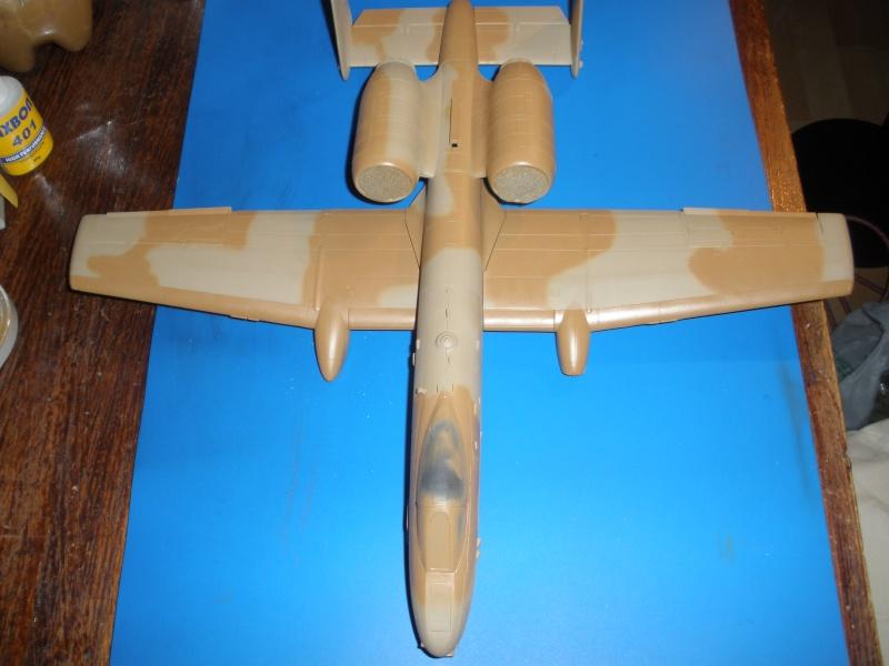 A-10 Thunderbolt II Hobby-boss 1/48. - Page 2 P1220315