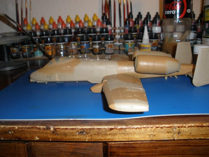 A-10 Thunderbolt II Hobby-boss 1/48. - Page 2 P1220316