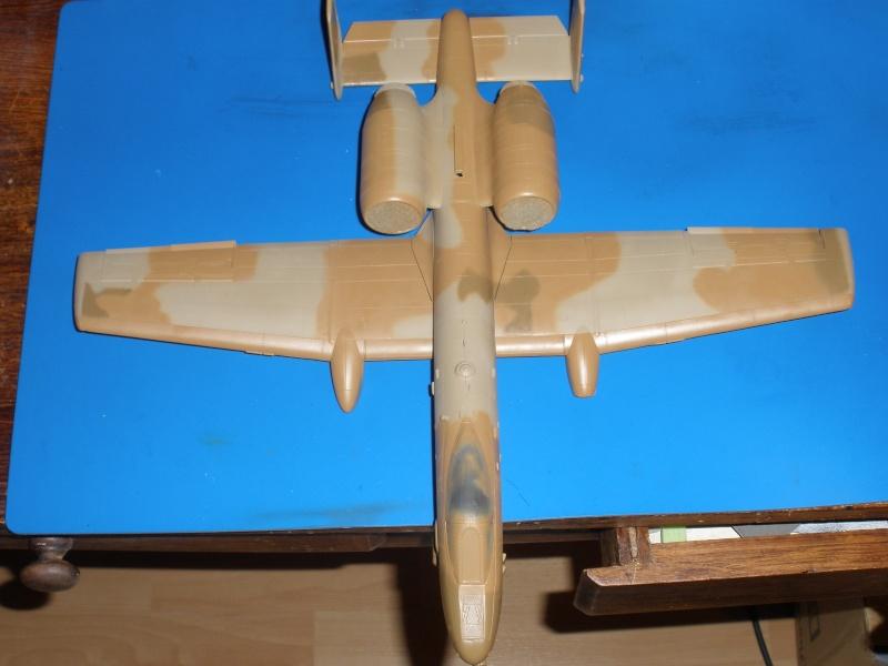 A-10 Thunderbolt II Hobby-boss 1/48. - Page 2 P1230314