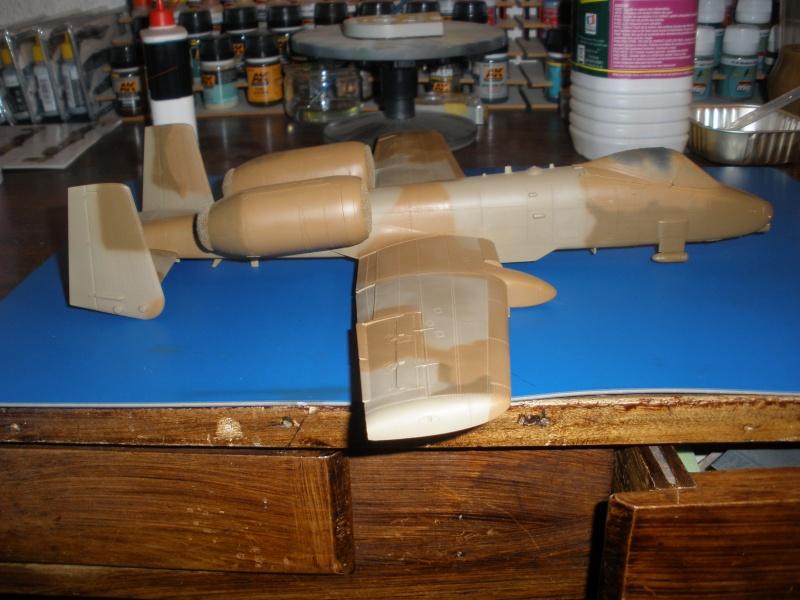 A-10 Thunderbolt II Hobby-boss 1/48. - Page 2 P1230315