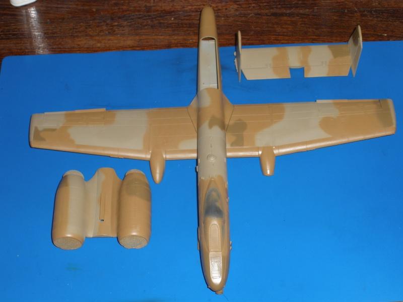 A-10 Thunderbolt II Hobby-boss 1/48. - Page 2 P1230318