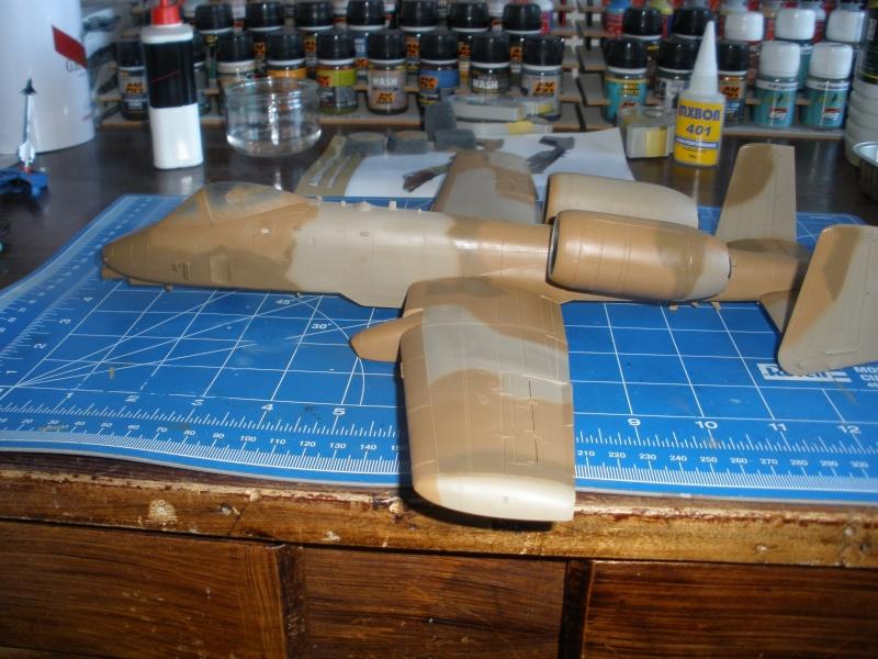 A-10 Thunderbolt II Hobby-boss 1/48. - Page 2 P1240315