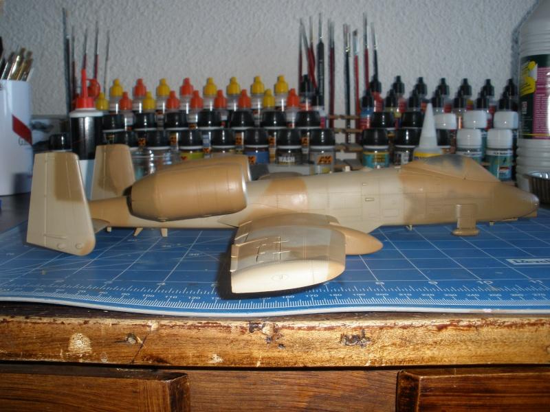 A-10 Thunderbolt II Hobby-boss 1/48. - Page 2 P1240316