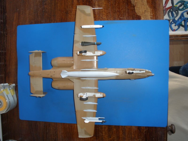 A-10 Thunderbolt II Hobby-boss 1/48. - Page 2 P2010311