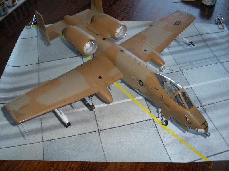 A-10 Thunderbolt II Hobby-boss 1/48. - Page 2 P2010314