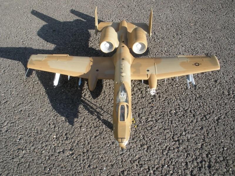 A-10 Thunderbolt II Hobby-boss 1/48. - Page 2 P2070311