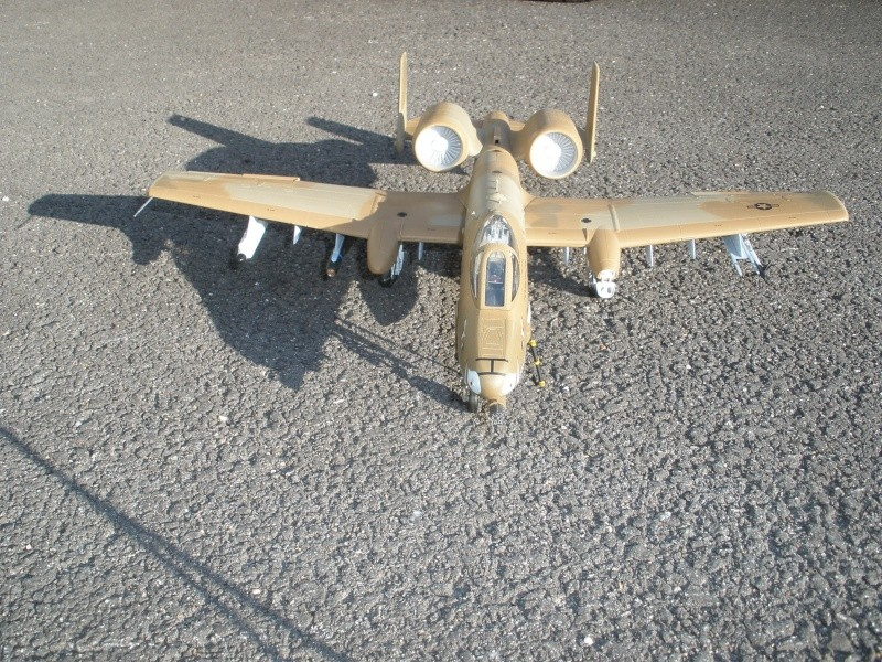 A-10 Thunderbolt II Hobby-boss 1/48. - Page 2 P2070312