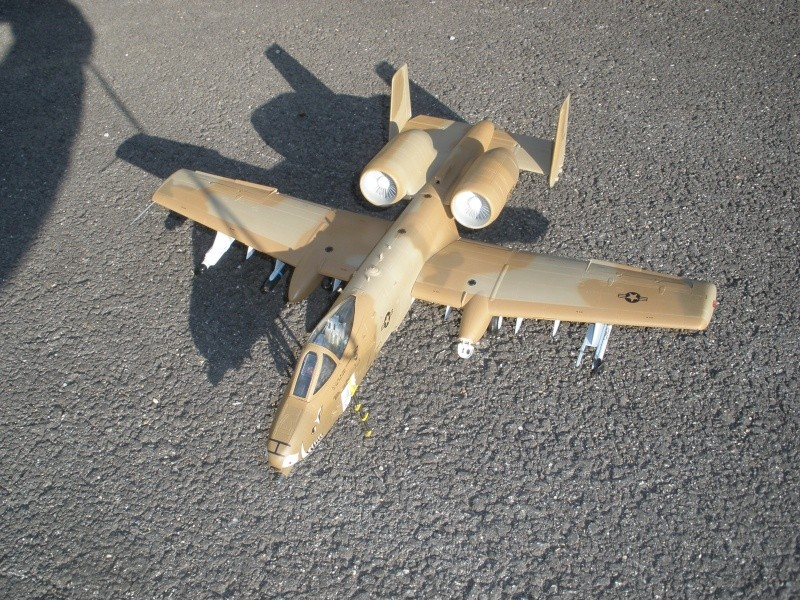 A-10 Thunderbolt II Hobby-boss 1/48. - Page 2 P2070313