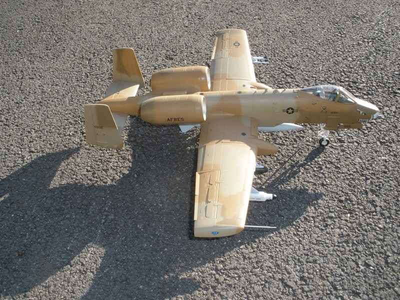 A-10 Thunderbolt II Hobby-boss 1/48. - Page 2 P2070314