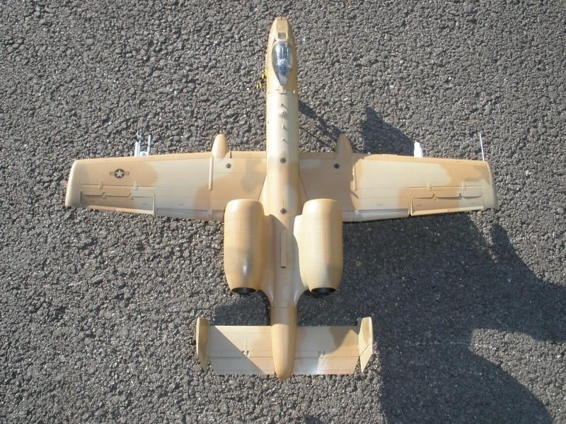 A-10 Thunderbolt II Hobby-boss 1/48. - Page 2 P2070315