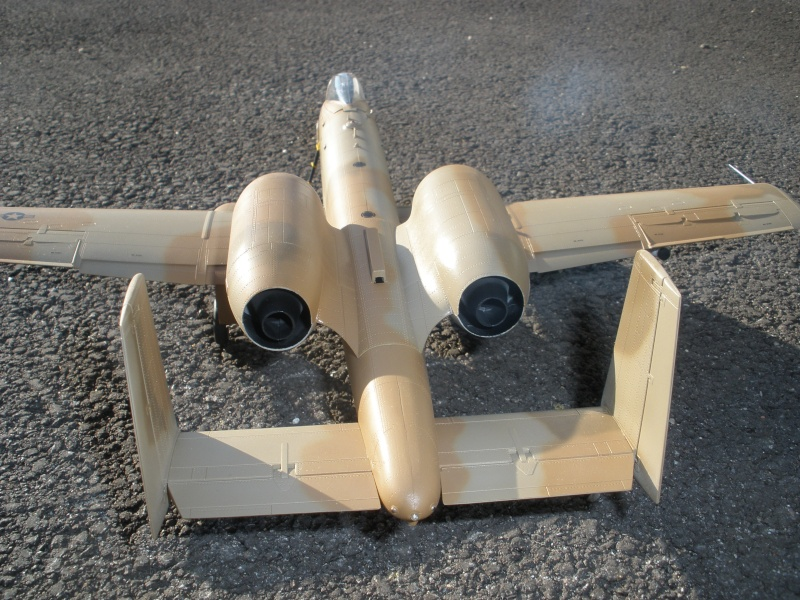 A-10 Thunderbolt II Hobby-boss 1/48. - Page 2 P2070316