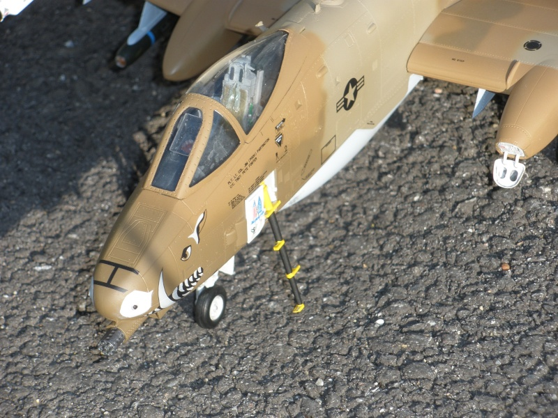 A-10 Thunderbolt II Hobby-boss 1/48. - Page 2 P2070318