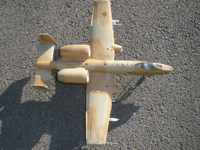 A-10 Thunderbolt II Hobby-boss 1/48. - Page 2 P2070321