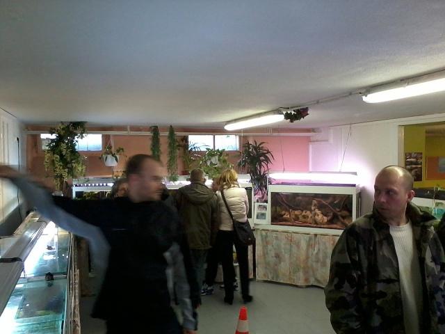 Portes ouvertes au club Crehange-Faulquemont - 15 février 2015-013