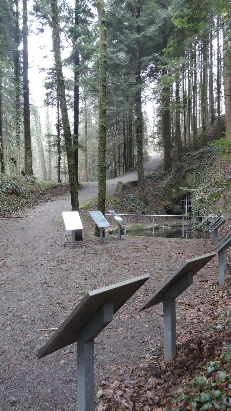 Mémorial et tombe à Haslach (Allemagne) Dsc00513