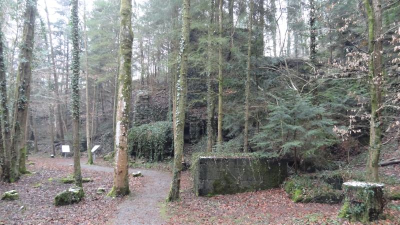 Mémorial et tombe à Haslach (Allemagne) Dsc00514