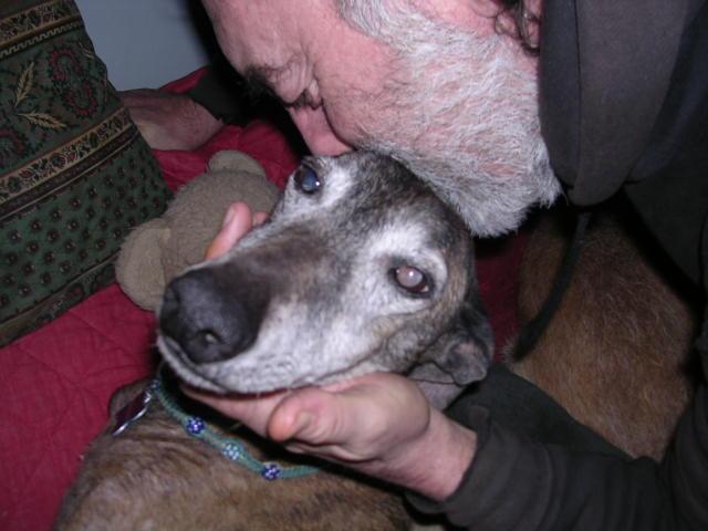 Mon zhom et les chiens Dscn7816