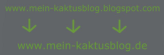 Mein Kaktusblog - Seite 4 Bild0010