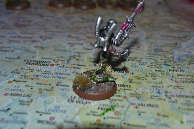 La cabale du crane rasé - Page 4 Dsc_0010