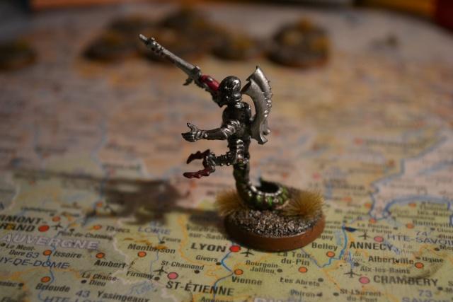 La cabale du crane rasé - Page 4 Dsc_0012