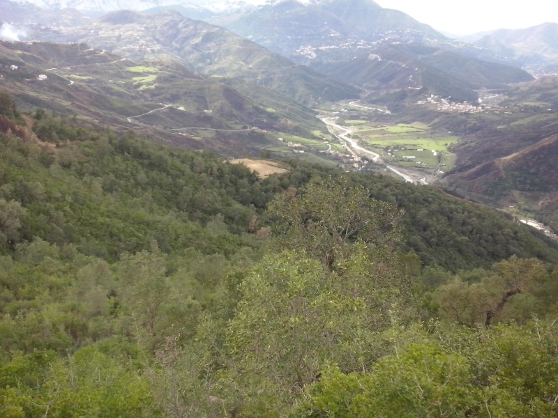 trekking to imma thadrarth, Aokas. 30/01/2015 Cam01116