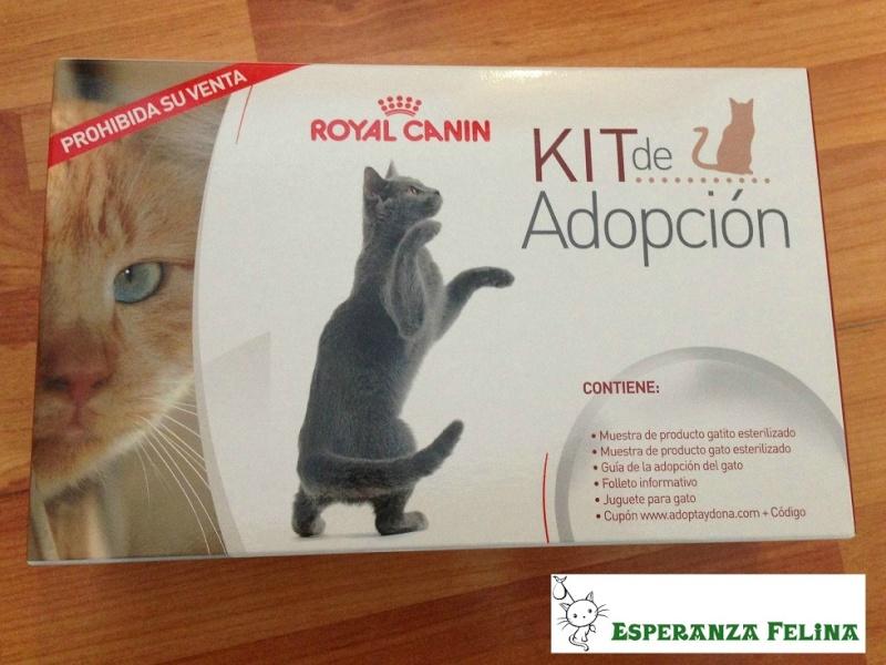 Kits de Adopción Royal Canin y donaciones de pienso a Esperanza Felina 03111