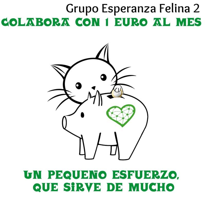 Ya tenemos Teaming Esperanza Felina, únete!!! - Página 5 Espera10