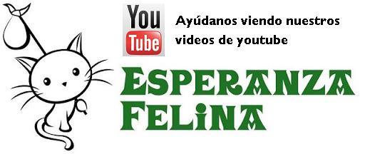 Ayúdanos viendo nuestros videos Espera11
