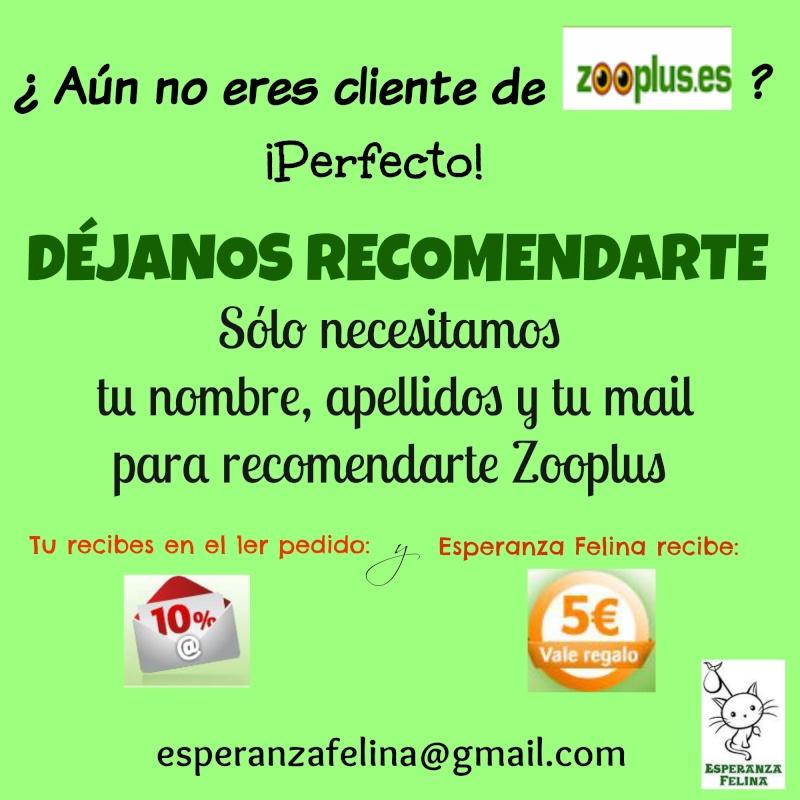 Recomendación Zoooplus: 10 % de descuento para ti y 5 € para Esperanza Felina Recome10