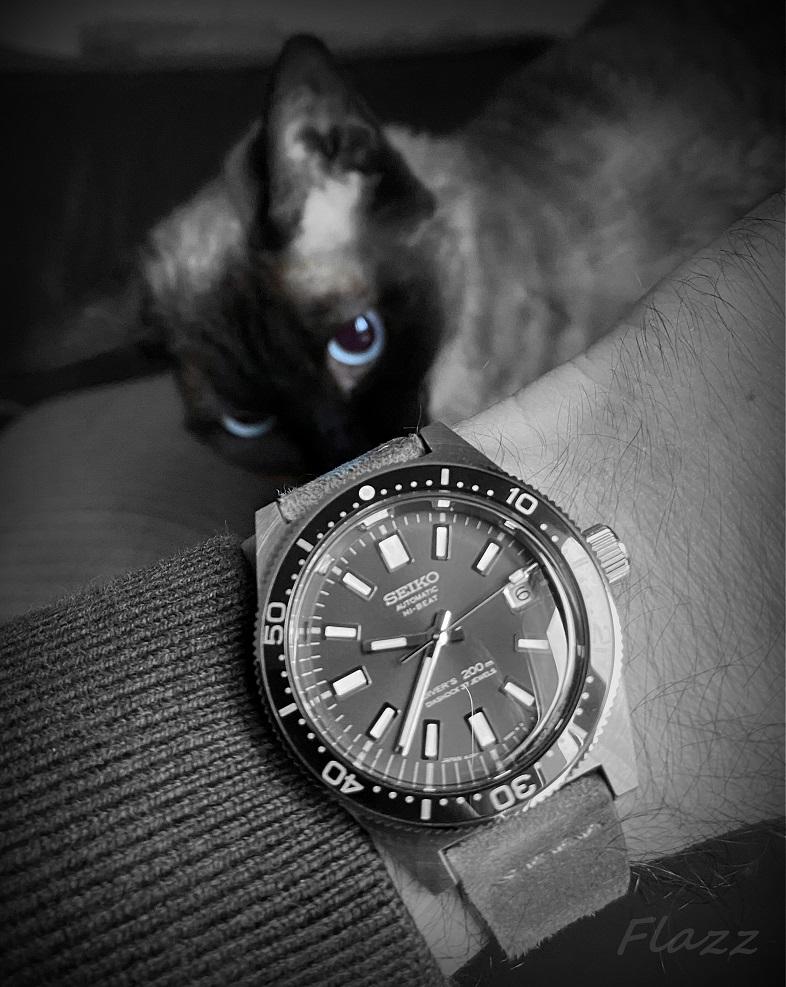 Votre montre du jour - Page 29 Img_6221