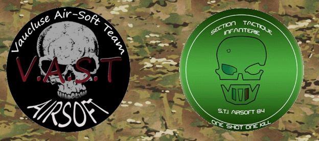 Fiche d'inscription V.A.S.T 2016 Logo-v10