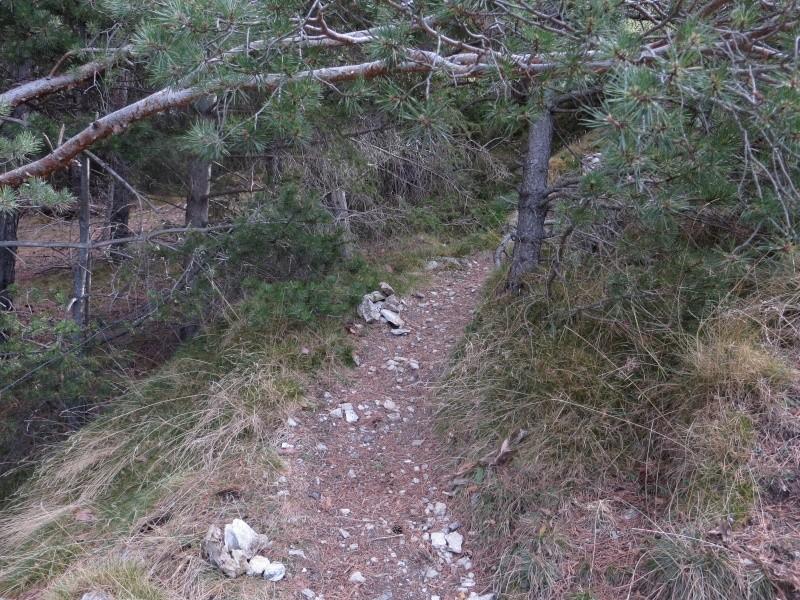 Les Gorges du Ségre (Llo)  Img_2314