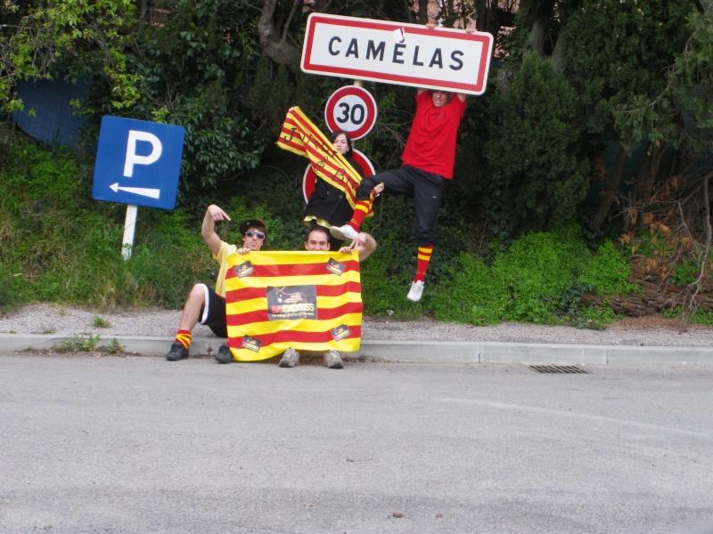 Camélas Imgp0812