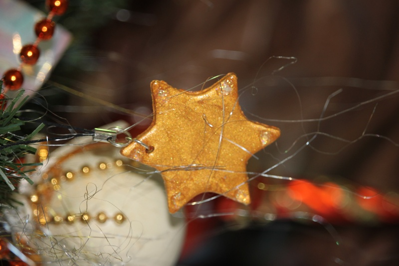 noel - Le Swap de Noel !!  - Page 8 Img_0714
