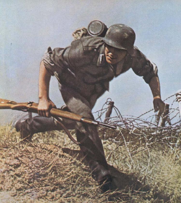 Refaire le bois d'un Mauser Photo_10