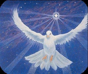 Rouah Hakodesh - Le Saint Esprit Colomb10