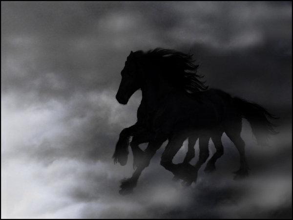 Le Pouvoir des Runes Sleipn10