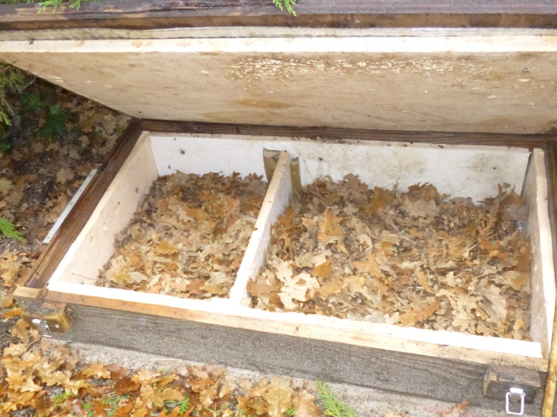 Hibernation dans garage Enclos10