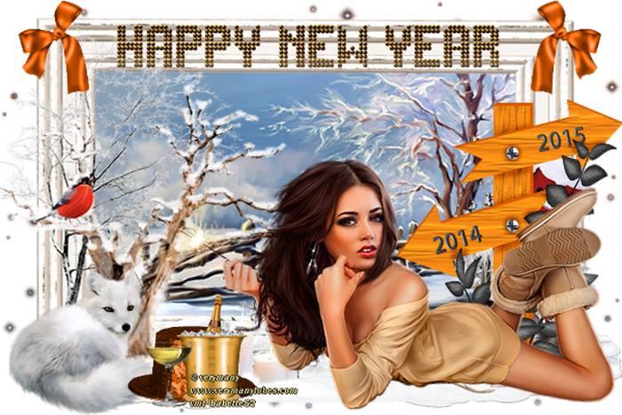 Nouvelle année 10891510