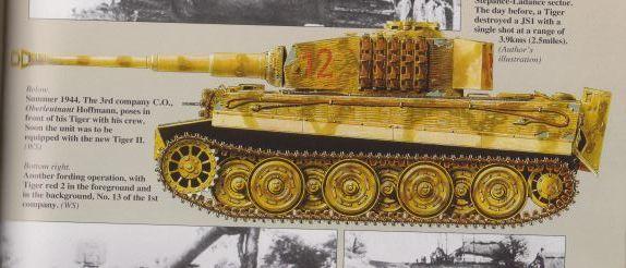 Tiger I's, Abt 506 & 507, Russia, 1944 Abt_5013